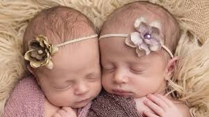two cute photographer takes adorable pics newborn twins