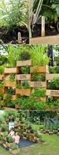 Best Plants For Vertical Garden - vertical gardens home outdoor decoration