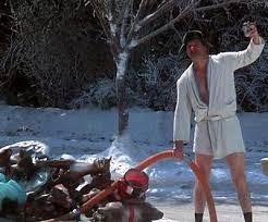 cousin eddie costume the golden rule for the cousin eddie in your borrowed light