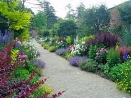 The Month Of June Flower - peter coats border in the month of june england trip summer of