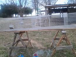 Rabbit Hutch Plans For Meat Rabbits How To Build Commercial Rabbit Cages U2014 Cfields Interior
