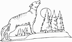 attractive inspiration coyote coloring pages printable for kids