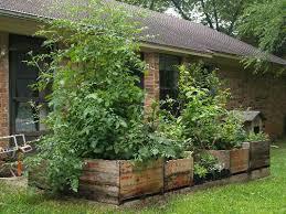 april gardening tips east texas gardening