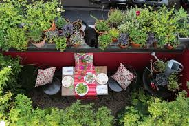 how to design a small garden ideas and tips curbed marie viljoen s former 66 square foot terrace