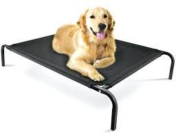 Burrowing Dog Bed Dog Burrow Bed Oxgord Steel Framed Portable Elevated Pet Bed Pet