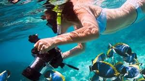 snorkeling images Budget hurghada tours snorkeling in mahmya island by emo tours JPG