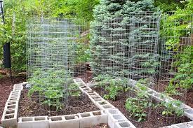 backyard vegetable garden house design with raised garden beds