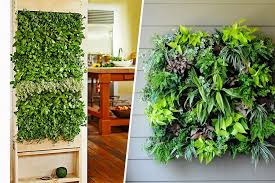 Wall Planters Indoor by Tripleclicks Com Vertical Wall Mounted Polyester Indoor Wall Planter