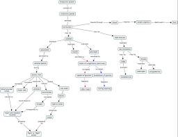 endocrine system concept map endocrine