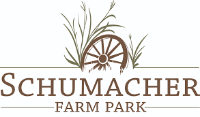 schumacher farm park making maple syrup in your own backyard