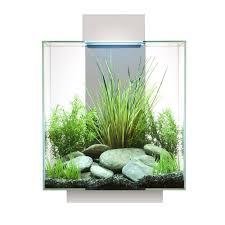 hagen fluval edge aquarium kit 12 gallon white aquarium