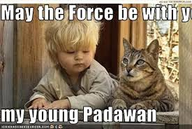 May The Force Be With You Meme - may the force be with you my young padawan cheezburger funny