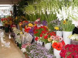 flower stores thien thanh fresh flower shop flowers delivery