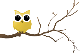 yellow owl on tree branch rooweb clipart