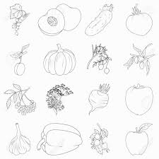 pretty ideas fruits and vegetables coloring book booklet