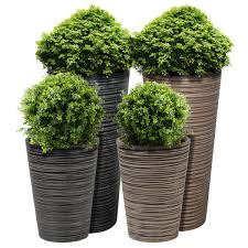 planters inspiring large plant pot large plant pots wholesale