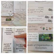 interactions in an ecosystem interactive notebook pages kesler