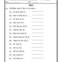 hindi grammar worksheet hindi worksheet language worksheet