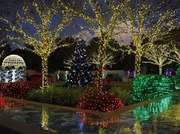 largo central park christmas lights holiday lights in the gardens visit st petersburg clearwater florida