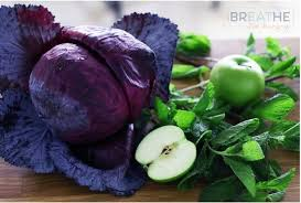 low carb red cabbage mint u0026 granny smith apple slaw