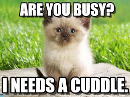 Cuddle Meme - need a cuddle are you busy on memegen