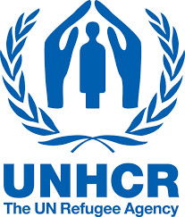 international organizations for human rights human rights organizations governmental intergovernmental