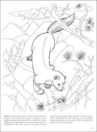 wildlife coloring books coloring pages tips