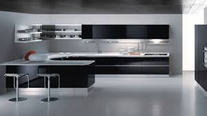 White High Gloss Kitchen Cabinets Kitchen Fantastic Black Kitchen Cabinet Pictures With Black High