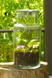 24 creative diy indoor garden ideas home magez