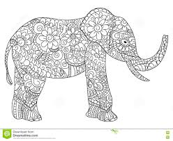 elephant coloring book vector for adults stock vector image
