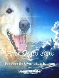 pet prayer protection prayer l pet communication l afterlife after