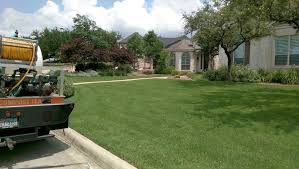 lawn service commercial lawn lawn care pet friendly lawn