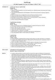 sle resume templates accountant trailers plus lodi carpenter resume sles velvet jobs