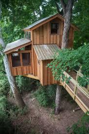 best 25 treehouse supplies ideas on pinterest building a