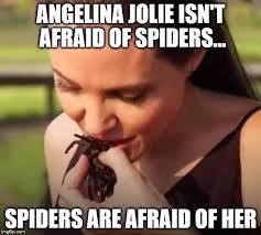 Afraid Of Spiders Meme - angelina jolie imgflip