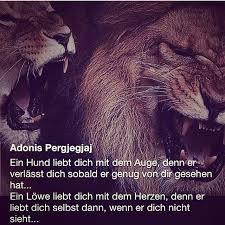 sprüche löwe prince batman instagram profile mulpix