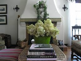 stucco fireplace and chartreuse hydrangeas fireplaces