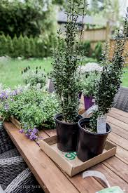 Planter Pots by The Best Tip For Filling Large Outdoor Planters So Much Better