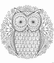 coloring page for adults owl free coloring pages adult worldwide free sle striking page owl