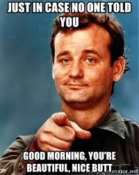 Good Meme Pictures - just in case no one told you good morning you re beautiful nice