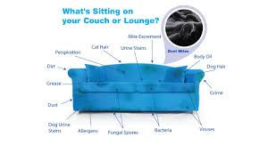 what is upholstery cleaning upholstered furniture cleaning