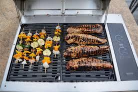 texan electric grill kenyon international inc kenyon