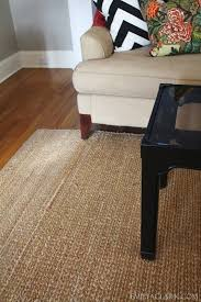 Pottery Barn Chenille Jute Rug Reviews Area Rugs And Emily A Clark