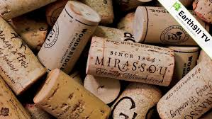 wine corks 4 diy ways to reuse wine corks earth911 com