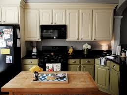 Diy Kitchen Cabinets Painting Outstanding Painted Kitchen Cabinets Ideas Colors Pics Design