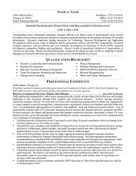 cio resume technical resume example