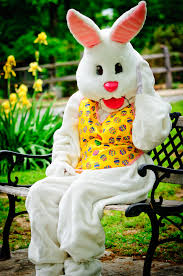 easter bunny file easter bunny jpg wikimedia commons