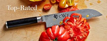 kitchen cutlery knives best kitchen knives williams sonoma