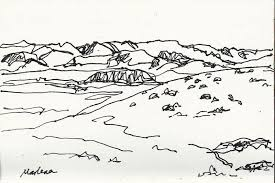 sketches for temperate grassland biome sketches www sketchesxo com