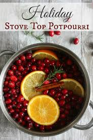 potpourri holiday stove top potpourri